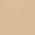 101-043 neutral beige