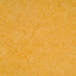 2121-072 Golden Yellow